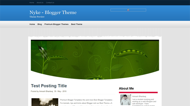 Nyke Blogger Template