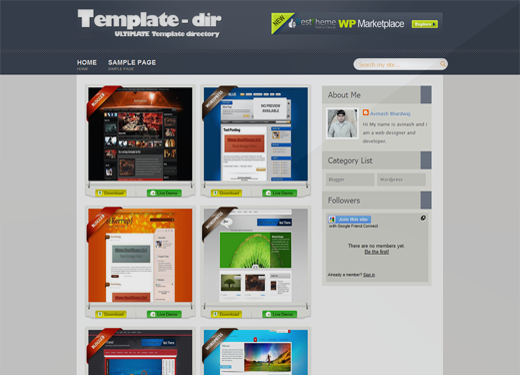 Template-dir Blogger Template